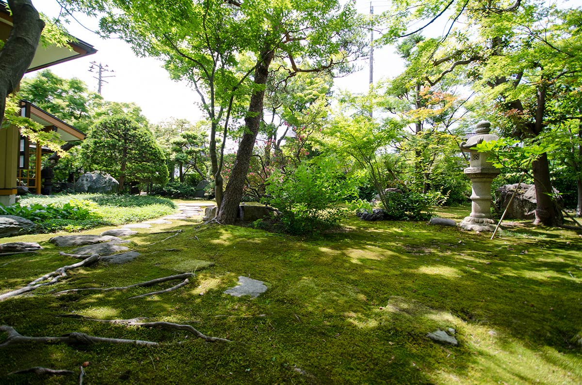 市中山居の庭